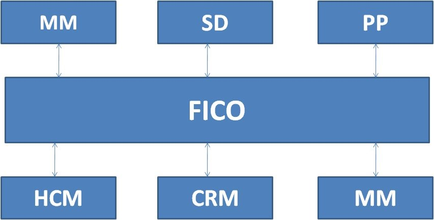 SAP FICO (Financial Accounting and Controlling) - Go Coding